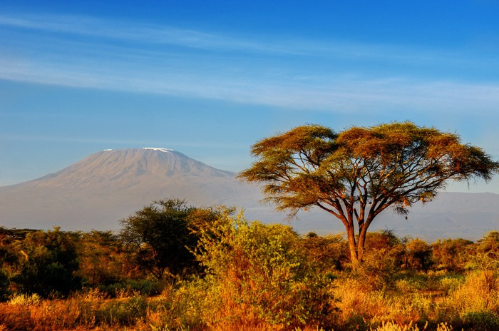 Beautiful Kilimanjaro mountain after sunrise in morning, Kenya,A